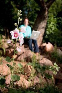 flower-blur
