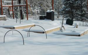 winter-garden1
